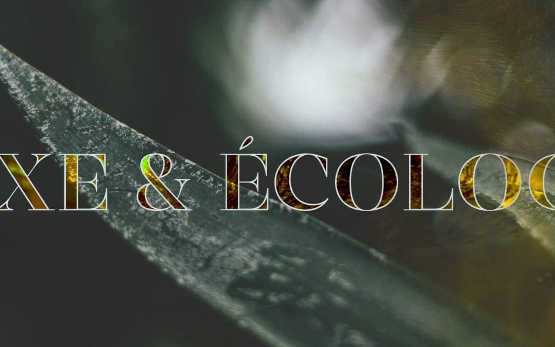 L'impact de l'écologie sur le luxe : les évolutions au sein des maisons